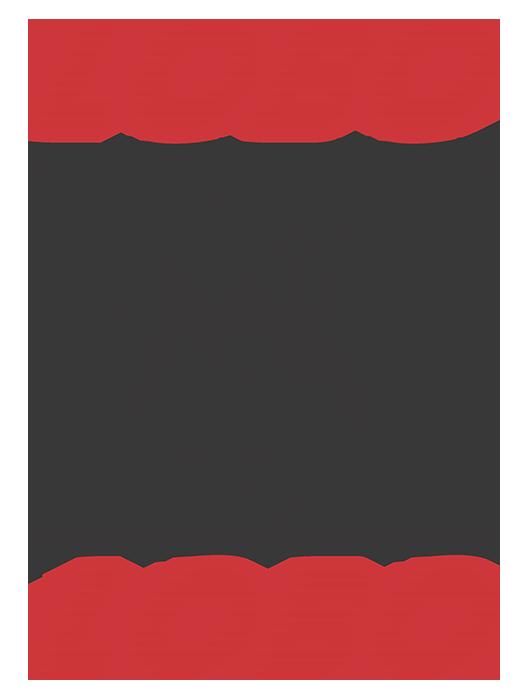 Lobo & Lobo LTDA